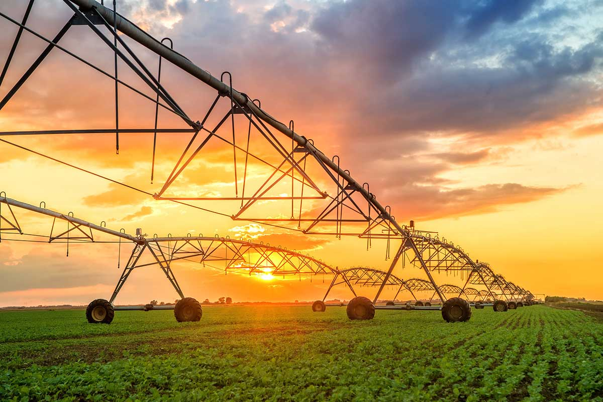 Agricultural / Irrigation